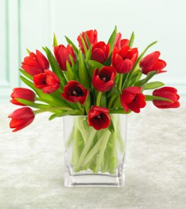 red_tulips